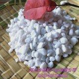廠家直銷漢白玉石子 漢白玉米石 白色小鵝卵石