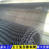 4mm土工复合排水网-云南生产工厂