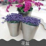 佛山藍博旺供應景觀不鏽鋼花盆 市政不鏽鋼花盆
