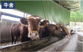 卷帘保暖抗寒布 猪场升降涂塑布 养殖场养鸡场遮阳棚