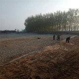 北京1.2mm阻穿刺HDPE土工膜