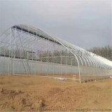 金坤連棟智慧溫室大棚設計 智慧溫室建造