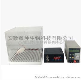大小鼠声电刺激仪