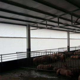 养牛场畜牧养殖场卷帘布加厚防寒保暖透光猪场卷帘布