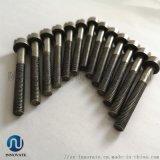 M4钼螺丝 真空炉用钼螺丝螺母 定制加工各尺寸丝杆