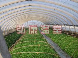 弘康温室 蔬菜种植温室大棚 生态采摘园建设