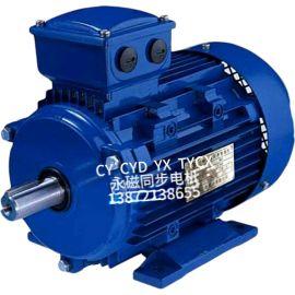 供应TYCX稀土永磁同步电机 大功率同步电机
