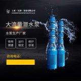 礦井排水泵 大流量潛水泵 高壓潛水泵 大口徑潛水泵