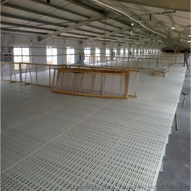 养鸡场漏粪地板鸡用漏粪板鸡鸭塑料网床