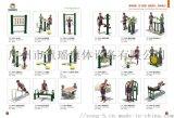 供应健身器材 健身路径 双人坐拉训练器厂家直销