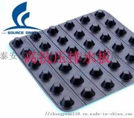 双面排水板/高抗压/聚乙烯排水板(阻跟效果好)
