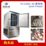 食品生鲜速冻机铝合金冷藏速冻柜TS-C300L