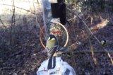 RFID鸟类标记,蛇类标记,野外动物识别