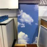北京3D艺术背景墙铝板绘画 立面图彩绘打印铝单板