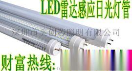 教室T8灯管_led感应灯管人体红外线雷达微波停车场感应灯