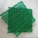供应天仕利养羊塑料网床