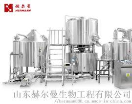 精酿啤酒设备 酿酒设备 造酒设备 酒水生产线
