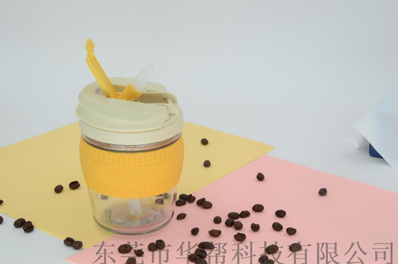 ins风咖啡杯 带盖吸管防漏玻璃杯 礼品咖啡水杯