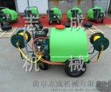 直供手推车式打药机300L汽油高压远程喷雾器