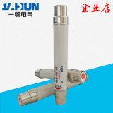 XRNT -(10)12KV/高分断能力6.3-40A 高压限流熔断器