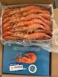 阿布玛莎ARBUMASA阿根廷红虾、L1、L2