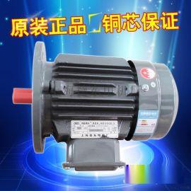 节能电机YE2-100L2-4 3KW B5