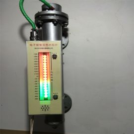 DSJ-6电子声光报警水位计