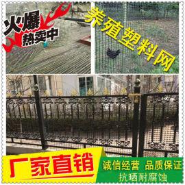 养殖网 塑料网围栏网 土工格栅
