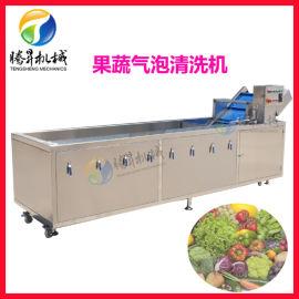厂家生产销售 超声波果蔬清洗机 不锈钢全自动气泡臭氧洗菜机