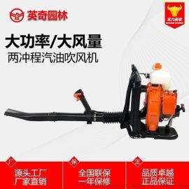 廠家直銷EB750兩衝程揹負式吹風機除塵消防滅火機