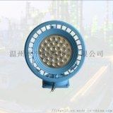 DGS100/127L(A)礦用防爆LED巷道燈