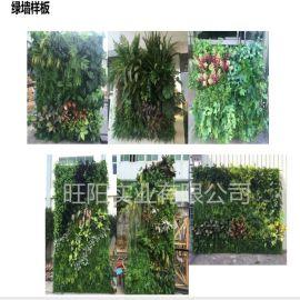 仿真植物墙 仿真花墙 婚庆背景装饰 WY-APW02