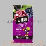 葡萄专用水溶肥 含腐殖酸水溶肥 增大增甜