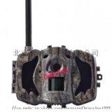 MG984G野外红外自拍相机