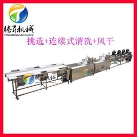 连续式清洗生产线 果蔬清洗风干生产设备