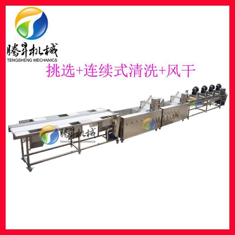 連續式清洗生產線 果蔬清洗風乾生產設備