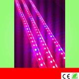 新款T5T8 LED植物生長燈 1.2米16W 植物補光燈