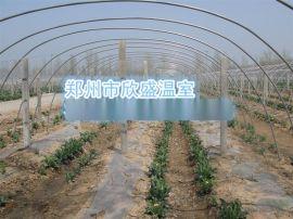 河南温室大棚|河南温室公司|郑州温室公司|玻璃温室|蔬菜大棚