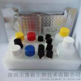 赭曲黴毒素Elisa檢測試劑盒