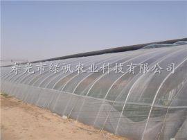 供应花梁架冬暖式日光温室 土墙体大棚 寿光蔬菜大棚