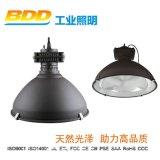BDD-WGK-04無極燈