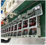 非標粉塵防爆照明動力配電箱