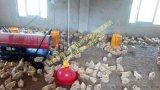 吉林工地热风炉30kw移动大功率燃油热风炉
