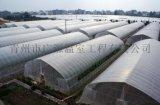 玻璃温室-智能玻璃温室-花卉玻璃温室