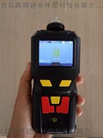 青岛路博LB-MS4X单一一氧化碳检测仪