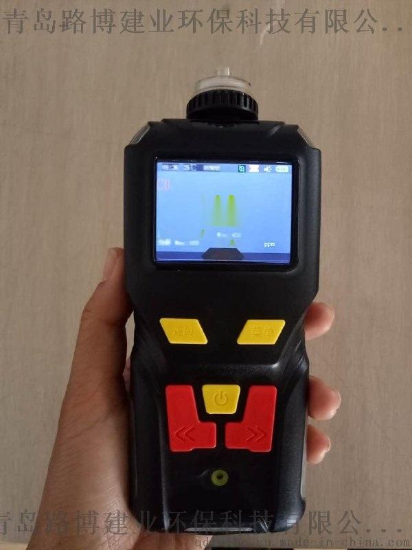 青島路博LB-MS4X單一一氧化碳檢測儀