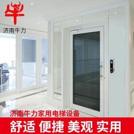 小型家用电梯 别墅电梯 二层三层四层五层