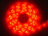 LED灯条(5M 300SMD5050)