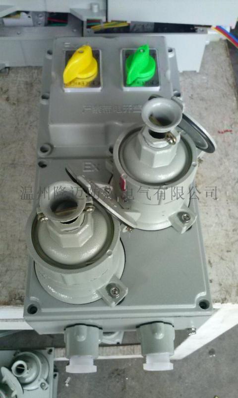 防爆插座檢修箱/工業電源插座箱