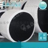 尼龙芯输送带产品说明 生产尼龙芯输送带产品